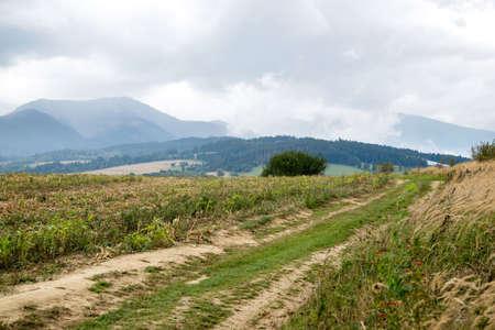 tatras: road to mountains, Tatras
