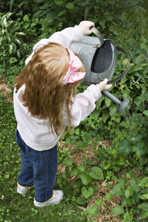 Small red-haired girl watering the garden with large aluminium watering can. 版權商用圖片