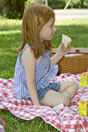 Small preschool age girl eating her picnic lunch in the park. Stock Photo - 439496