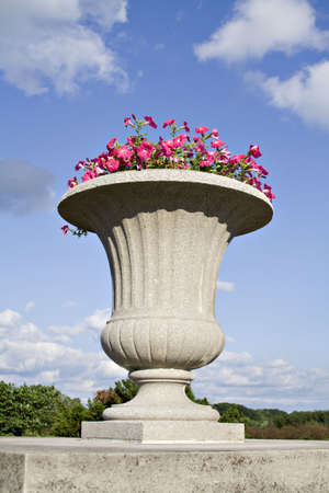planter: A stone urn planter filled with pink petunias against a blue summer sky.