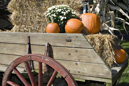 A beautiful fall arrangement of pumpkins, straw, mum flowers, corn stalks, in an antique wooden wagon. photo
