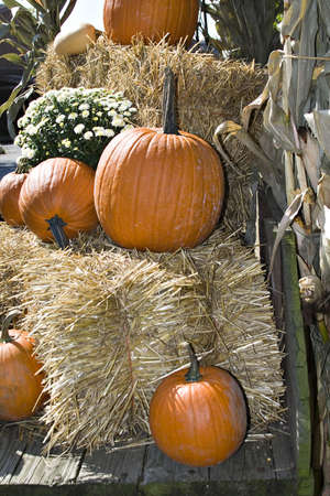 Fall display in an antique wooden wagon. Pumpkins, flowers, straw, hay, mums, corn stalks Stock Photo - 547092