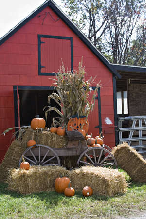 A Fall scene; red barn; wooden wagon; straw, hay pumpkins; halloween; thanksgiving; corn; stalks photo