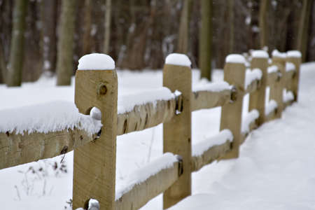 Fence in a nature park after snowstorm - shallow depth of field. photo