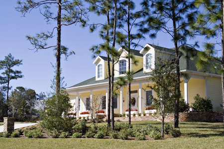 A beautiful large southern American suburan home landscaped with many tall pines. Stock Photo - 789629