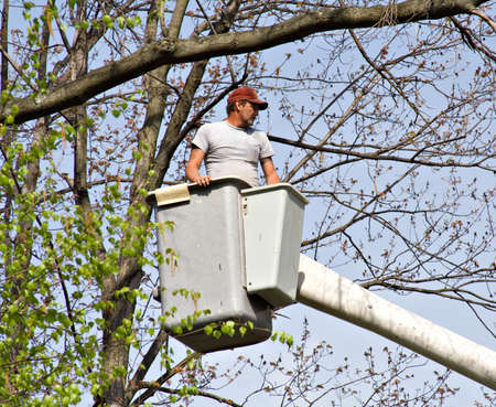 Tree Worker evaluating the job from a bucket truck  photo