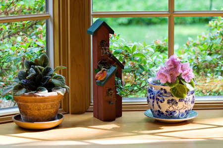 View of a interior home window sill overlooking spring yard and lawn.