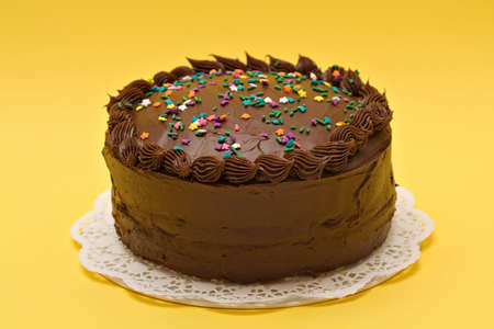 A chocolate-lover's cake  with colored sprinkles. Stock Photo - 965413