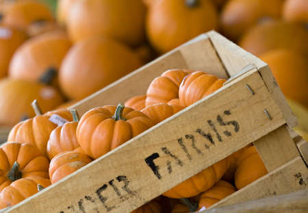 A farmers crate of small pumpkins or gourds for sale at a market.  Stock Photo