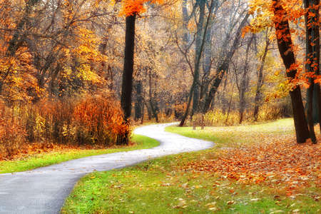 A winding walking path through the Cleveland Metro Park on an autumn day. Stock Photo