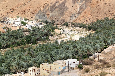 Oman Wadi Village