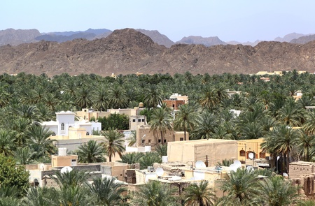 Nizwa Oasis, Oman Stock Photo