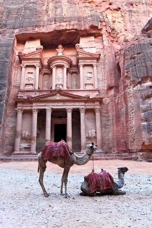 architectural heritage of the world: Camels in front of The Treasury in Petra, Jordan