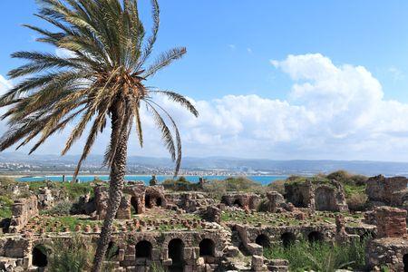 lebanon: Tyre Roman Ruins , Lebanon