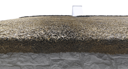 thatch: Thatch Roofing