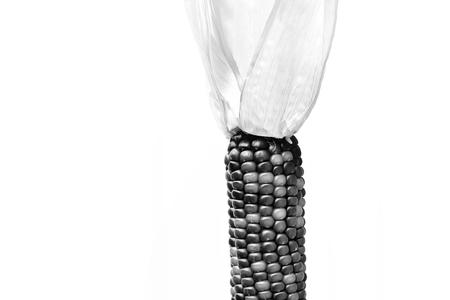 Heriloom Corn