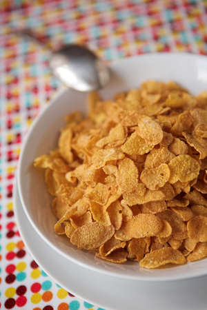 Cornflakes ready for breakfast - shallow dof