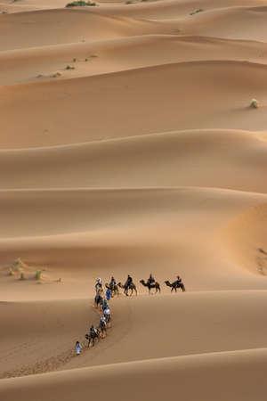 Camel caravan trekking across the Sahara