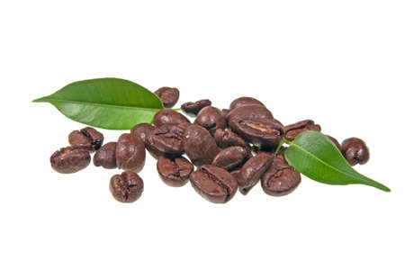 Fine coffe bean on whitre background. photo