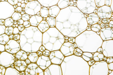 samll: Nice yellow samll web over a blur background