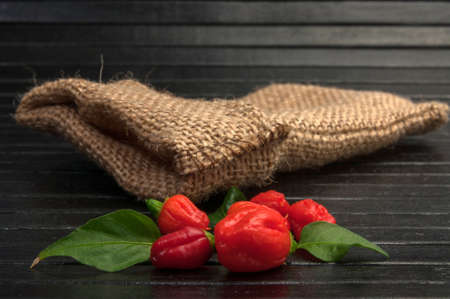 hottest: Red hot chili on black cutting board