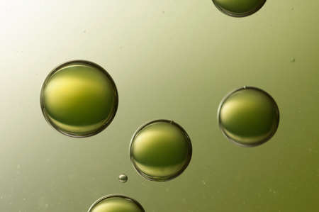 明るい緑の背景の上を飛んでいくつかの大きな空気の baallon. 写真素材