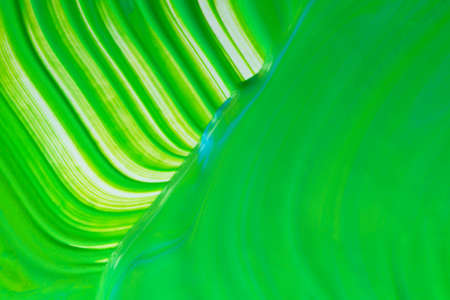 Green and white linear art work. 写真素材