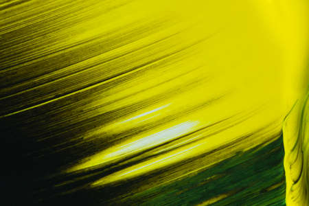 Color gradient art work, with a mix of yellow and black. 写真素材