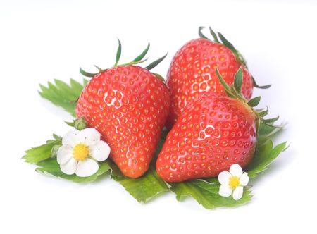 Erdbeeren strawberries on white background