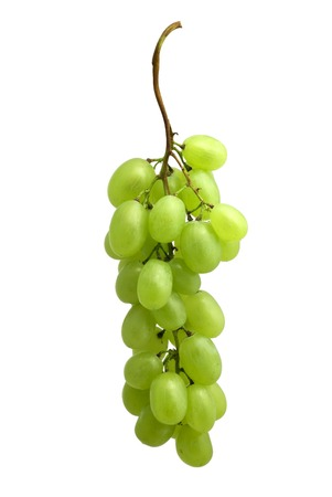 washed: Washed blue grape cluster on white (w clipping path) Stock Photo