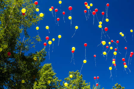 colorful balloons fly into the blue sky