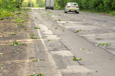 cars moving on a road strewn with branches and leaves after a strong wind, selective focus