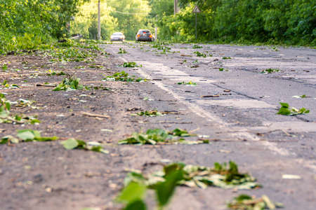 road strewn with branches and leaves after hurricane wind, selective focus