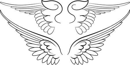 Barok Wings in Kalligrafie Stijl. Vector illustratie.