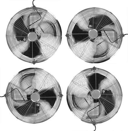 summer's: Four Fans