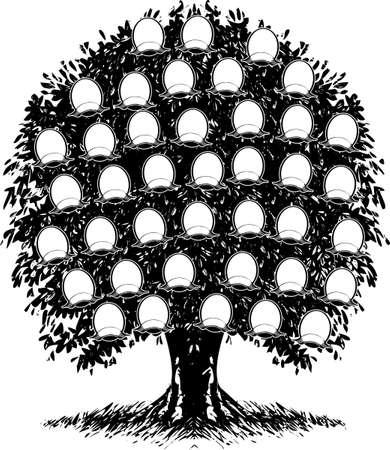 Een kleur stam boom. Portretten zijn gescheiden. Vector illustratie.