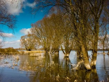 wetlands: wetlands Stock Photo