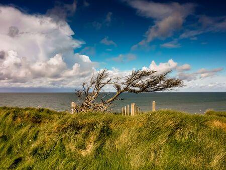 Coast in the beach Stock Photo
