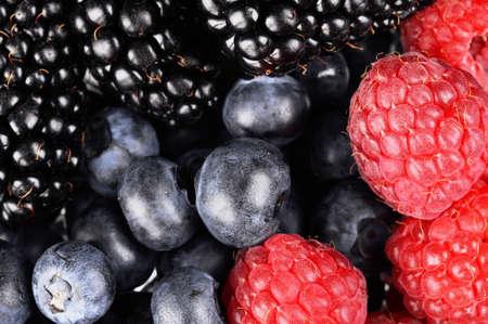 antioxidants: sorted fresh berries full antioxidants