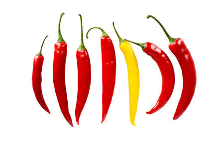chilled out: Top view individuality in line composition chilli peppers isolated on white background