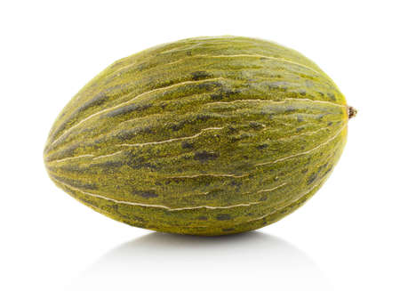 Studio shot of whole ripe melon piel de sapo isolated on white background