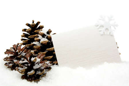 christmas ornamentation: White christmas decoration with wishes card on snow with pine cones on white background