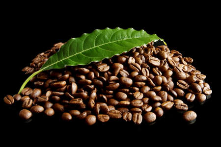 Collected coffee cup and beans on black background