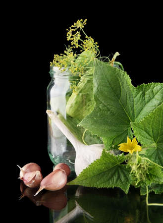 tendrils: Cropped shot of cucumbers in jar preparate for canning with flower bud,leaves,jar,garlic,dill flowers and tendrils isolated on black background
