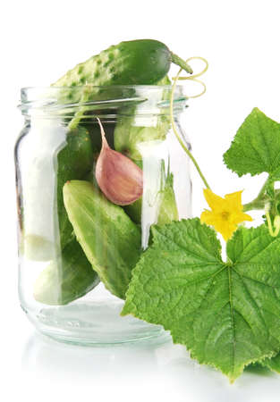 tendrils: Cropped shot of cucumbers in jar preparate for canning with flower bud,leaves,jar,garlic,dill flowers and tendrils isolated on white background Stock Photo