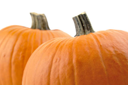 cropped shots: Decoration of pumpkins for thanksgiving day on white