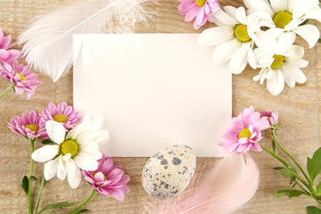 Blank card for easter greetings on wooden plank with quail eggs and pink and white flowers Stock Photo