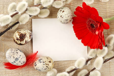 catkins: Blank card for easter greetings on wooden plank with quail eggs,catkins and red hen feathers and red gerbera Stock Photo