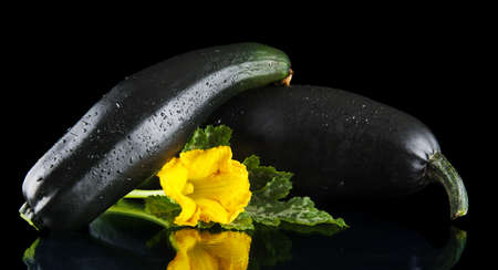 outspreading: Mature two courgettes with flowers on black background Stock Photo