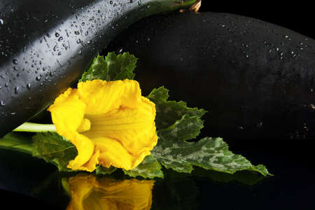 outspread: Cropped view of two courgettes with flowers on black background